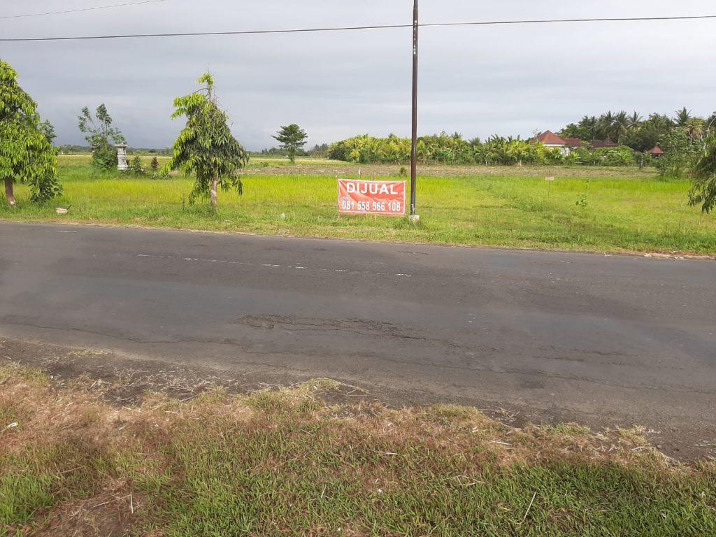 Dijual Tanah Delod Berawah